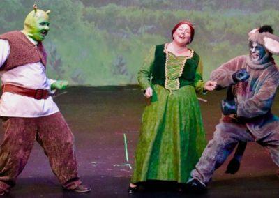 Shrek Fiona Donkey2
