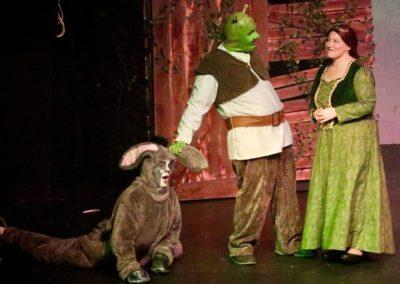 Shrek fiona donkey 3
